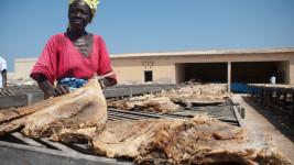 Senegal – Yoff (2010)